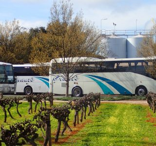Coachline-wine-tours-adelaide